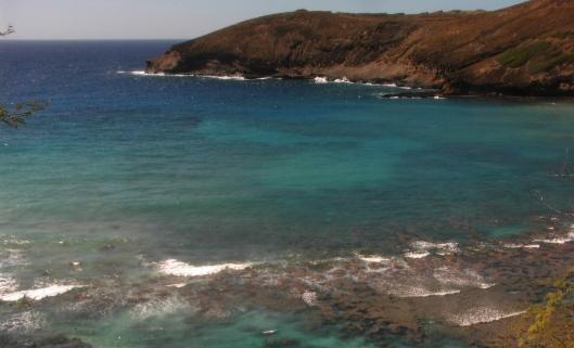 hawaii-and-linct-182