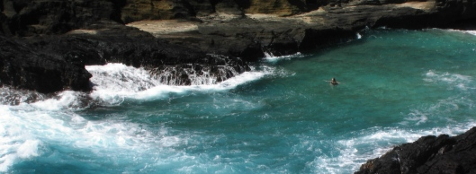 hawaii-and-linct-184