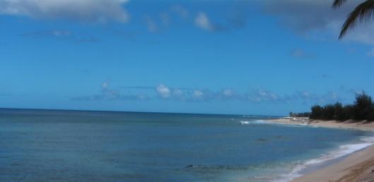 hawaii-and-linct-192